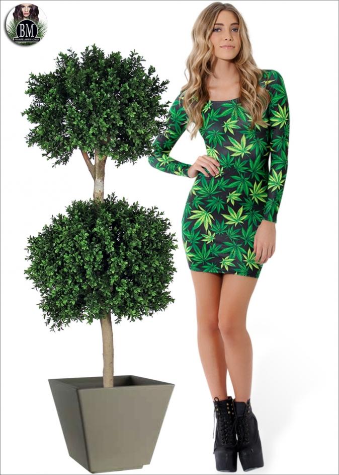 boxwood-pianta-2-sfere