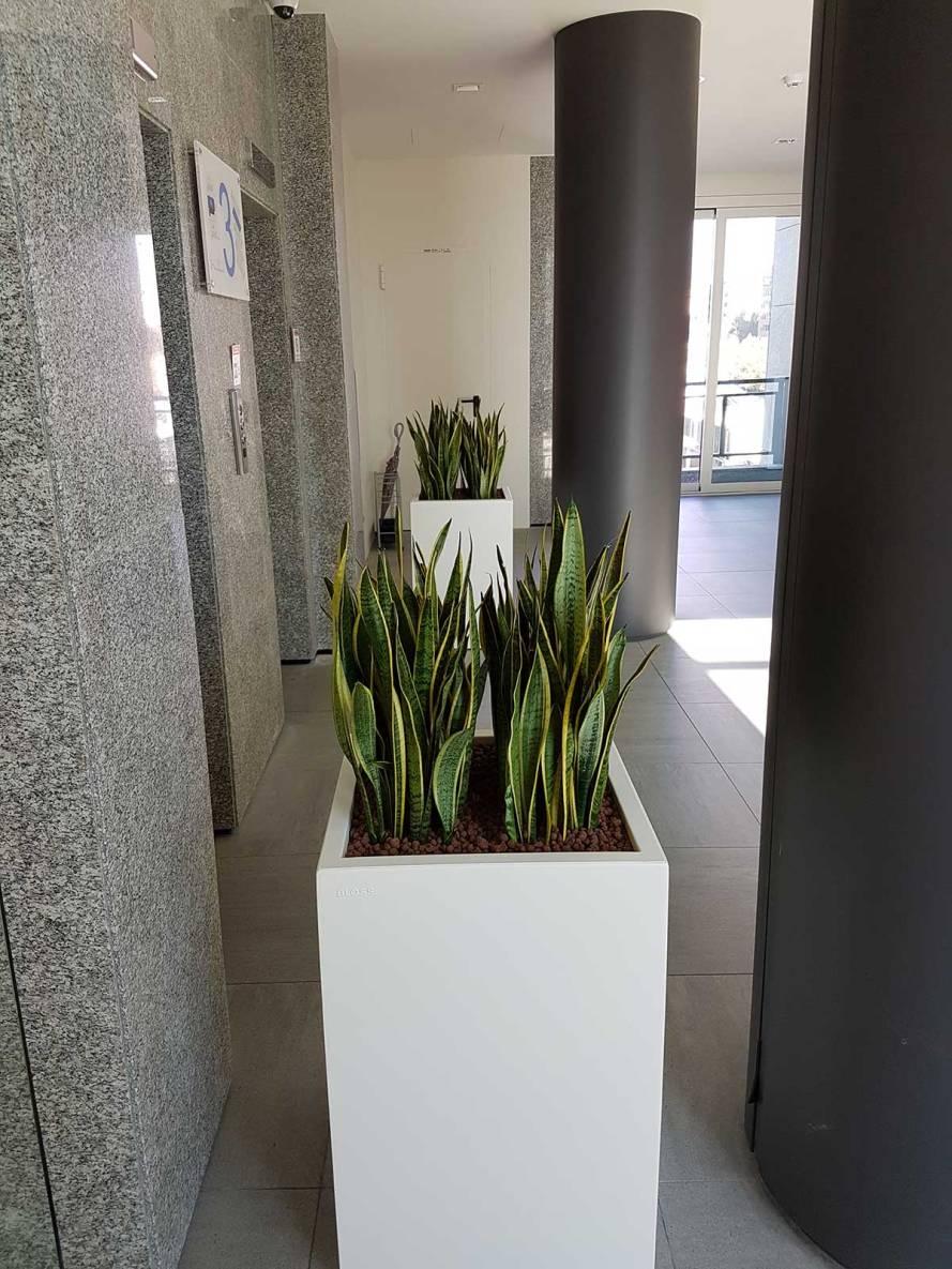 Allestimento della sede della bpm banca popolare di - Giardino artificiale ...