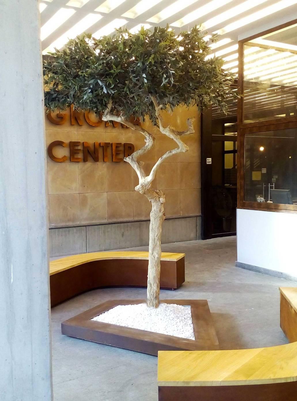 GROMA-CENTER